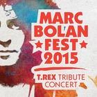 Фестиваль Марка Болана